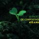 18 anos de Compostagem até a Humi (Morada da Floresta)